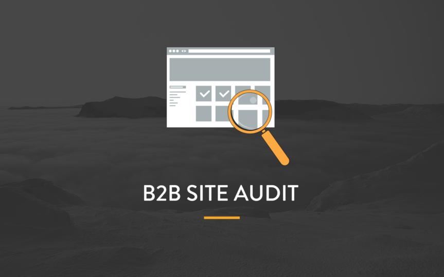 B2B audit