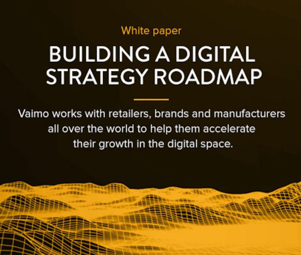 Building a Digital Strategy Roadmap Vaimo